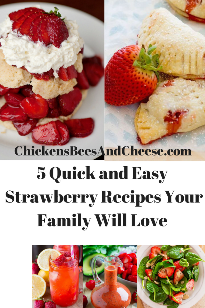 5 quick and easy strawberry recipes your family will love for What can you make with strawberries